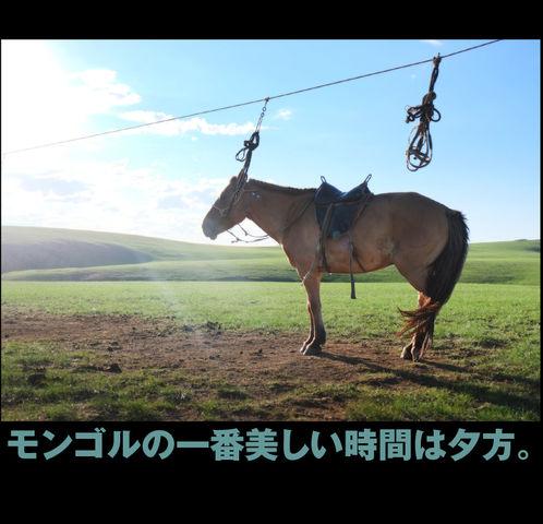 mongol_05_0004