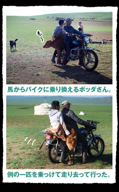 mongolia_055