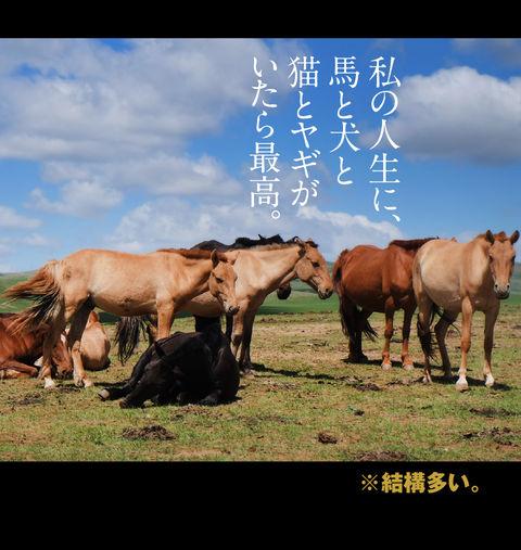mongolia-08-038
