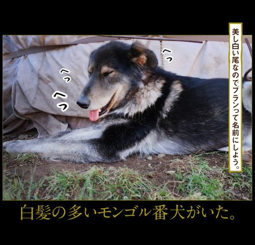 rie_03_0051
