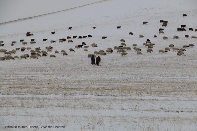 モンゴル大雪