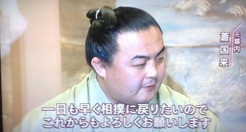 大相撲八百長裁判、蒼国来完全勝訴! : モンゴル情報クローズアップ!