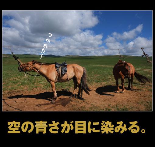 mongolia-08-016