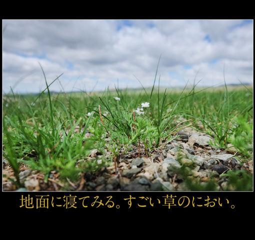 mongolia-08-028