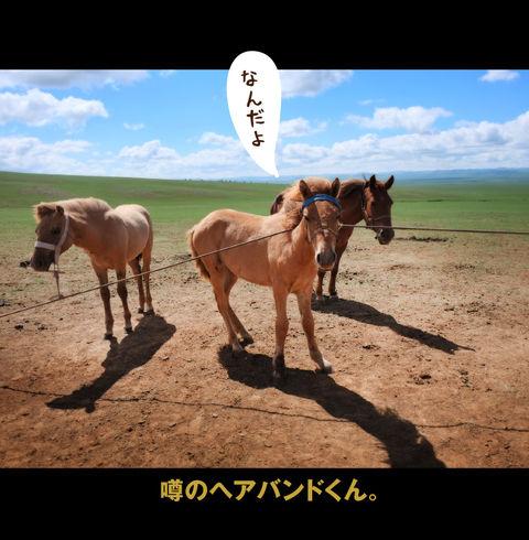 mongolia-08-021