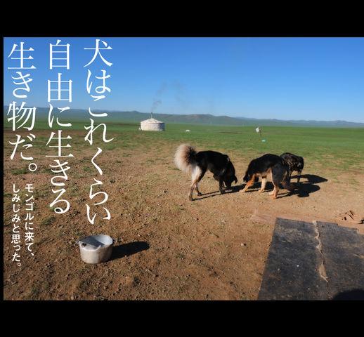 mongol_006_0010