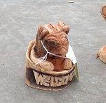 森の日曜日看板犬「もも」のブログ