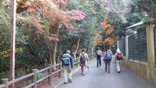 神社横を登山道へ