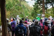 �森林荒廃と再生説明