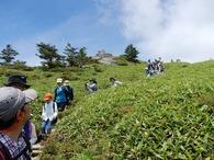 s-DSCN9334 男山コース下山中