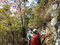 �散策(登り)