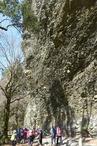 �礫岩峰を見上げる