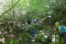 �三滝渓谷・3