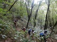 x-DSCN4409 桑瀬峠まではただひたすら登る登る