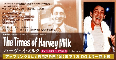 harveymilk_head