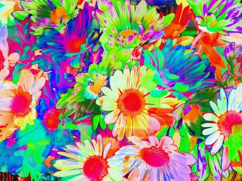 daisys 005_peoooooo