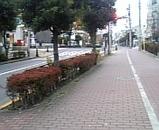 59b012bf.jpg