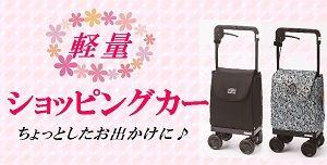 shoppingcar