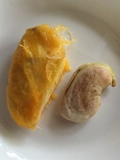 mango3