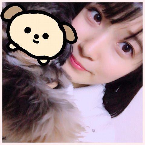 【エンタメ画像】【悲報】森戸知沙希の愛犬ぽんちゃん