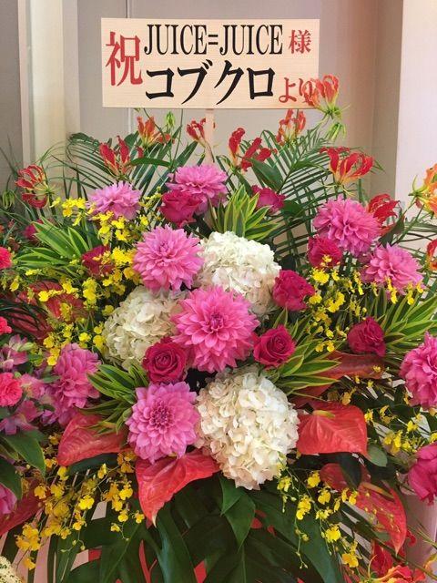 【エンタメ画像】【Juice=Juice】高木紗友希がコブクロからの花に喜んでるけど本物なの?