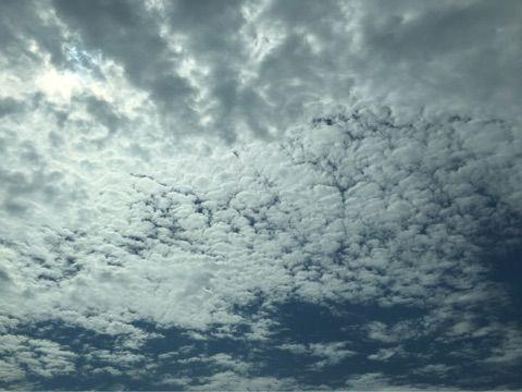 【エンタメ画像】【つばきファクトリー】浅倉樹々さん「空きれい」