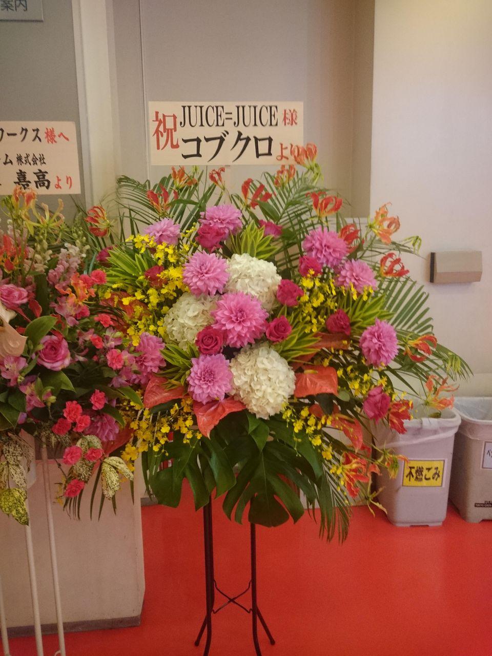 【エンタメ画像】Juice=Juiceのライブ会場にコブクロから花来たぞ☆☆☆