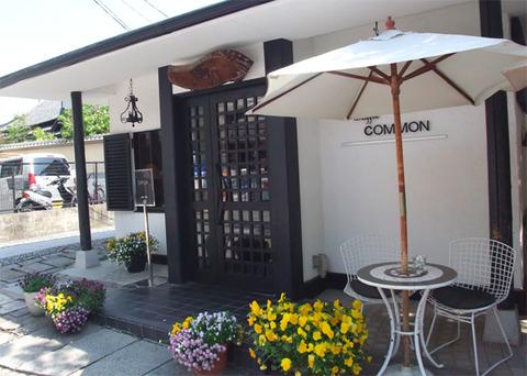 common_01