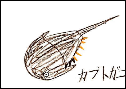 BLYU4411