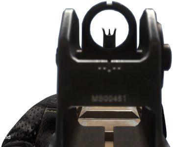 Remington_R5_iron_sights_CoDG