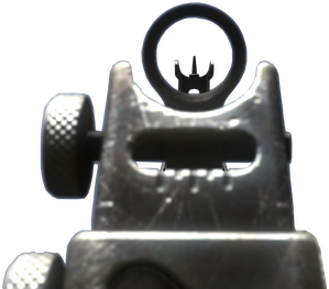 FAD_iron_sights_CoDG