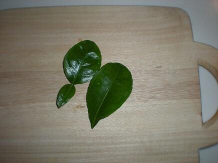 こぶミカンの葉
