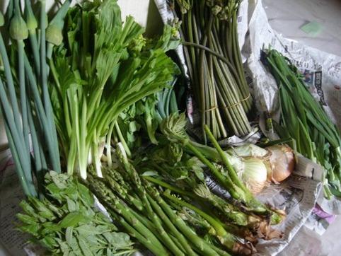 山形の山菜と野菜