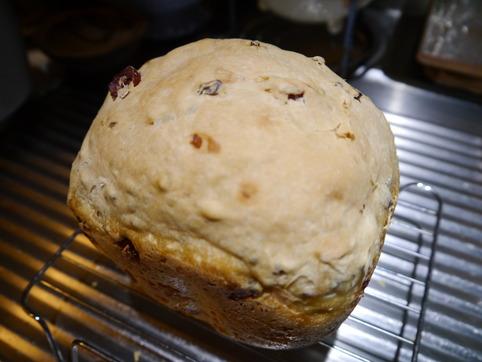 カカオ豆とクランベリーのパン