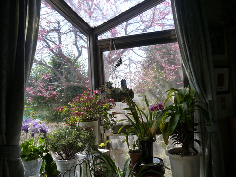 仕事部屋の出窓
