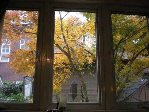 台所の窓から・・