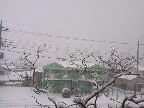 雪がどんどん降っている