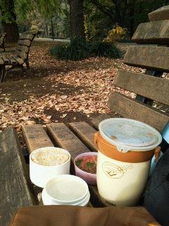 代々木公園でお弁当♪