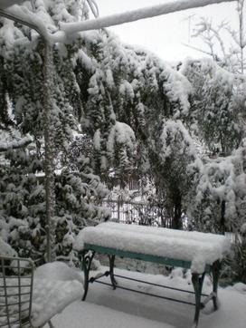 雪がどんどん降っている・・