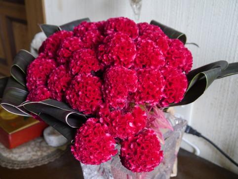 うさぎさん花