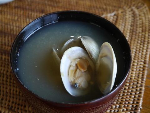 ホンビノス貝の味噌汁