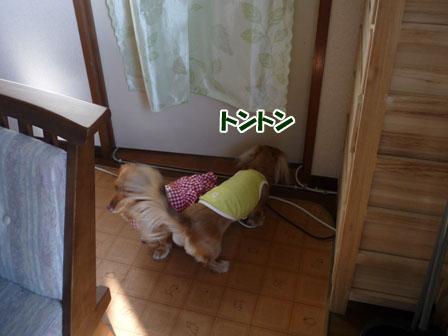 004_20101209212406.jpg