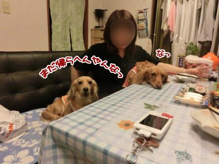 041_20120921001739.jpg