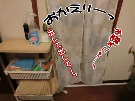 001_201411120045215bc.jpg