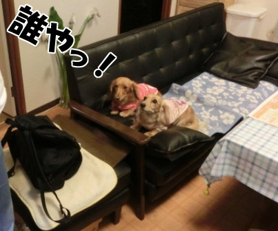 024_20121024010114.jpg