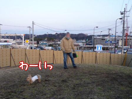 007_20110216231057.jpg