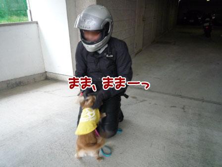 008_20111002002909.jpg