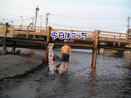 080_20110802003935.jpg