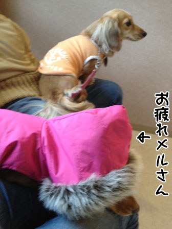 037_20111222231830.jpg