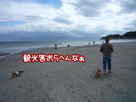 014_20110530231013.jpg
